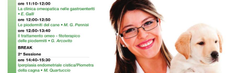 Medicine complementari in Veterinaria